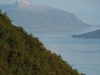 Juneau (9)
