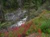 Yukon (4)